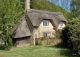 england__015_thatched-house_wallness1